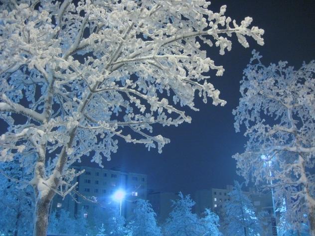 МЧС ждет аномальные морозы в столице с6января