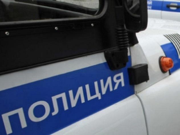 Москвич попался на краже позолоченной статуи в парке