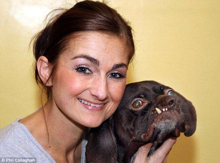 Новая хозяйка от пса без ума - фото Daily Mail