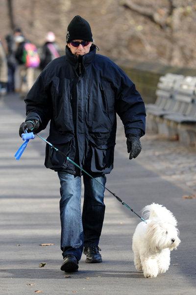 Майкл иногда забирает детей из школы и гуляет с собакой
