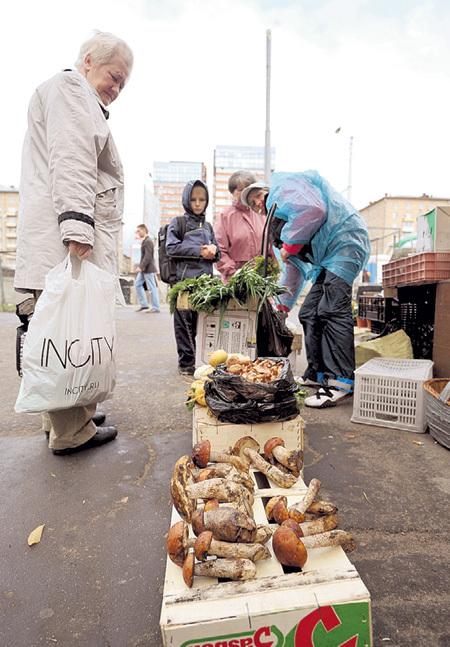 Опаснее всего покупать грибы на рынке: не исключено, что они собраны... Фото Евгении ГУСЕВОЙ/«Комсомольская правда»