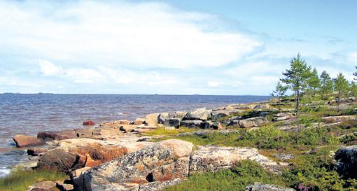 Здесь, на острове в Белом море, 13 пацанов прошли школу жизни