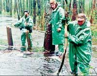 В ПСКОВСКИХ БОЛОТАХ: ребята из «Экипажа» ищут затонувший танк