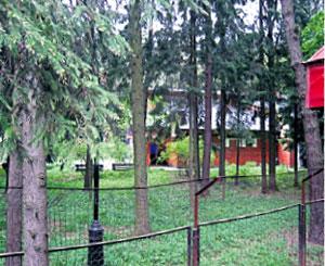 УЧАСТОК МЭТРА: в полутора метрах за кирпичным забором стоит второй - сетчатый, а между ними круглосуточно бегают злые собаки