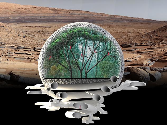 «Марсианский город» вДубае построят через 2,5 года