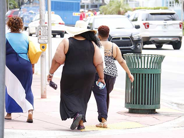 Ученые отыскали способ сбросить лишний вес, употребляя жирную пищу