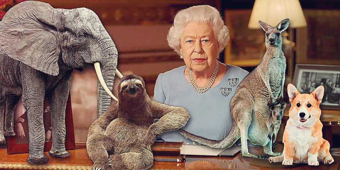 Животные английской королевы